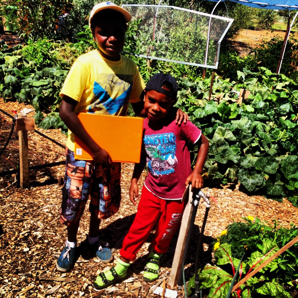 Students in the community garden working hard