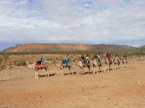 Camel Train ride